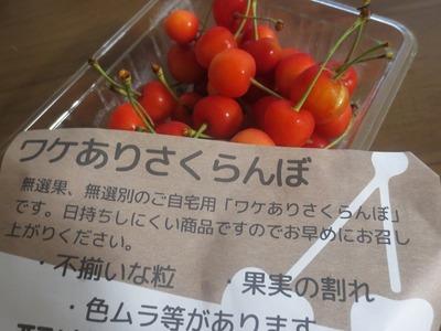 wakearisakuranbo_1.jpg